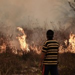 Indonesia forest fire INDONESIA MALAYSIA SINGAPORE ENVIRONMENT HAZE